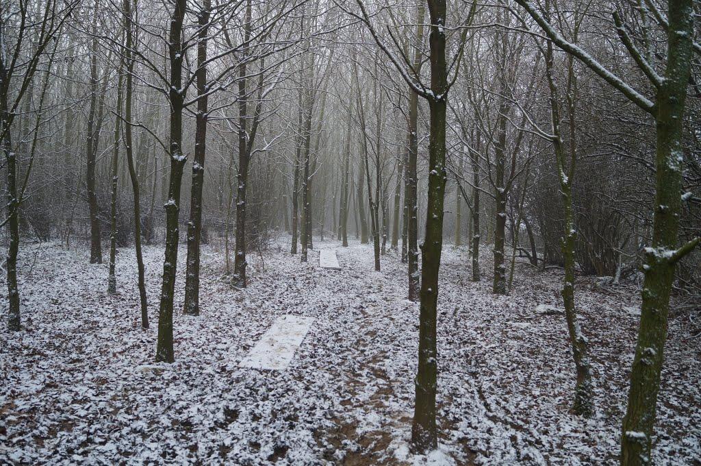 Sutton Meadow in Snow, Саттон-ин-Ашфилд