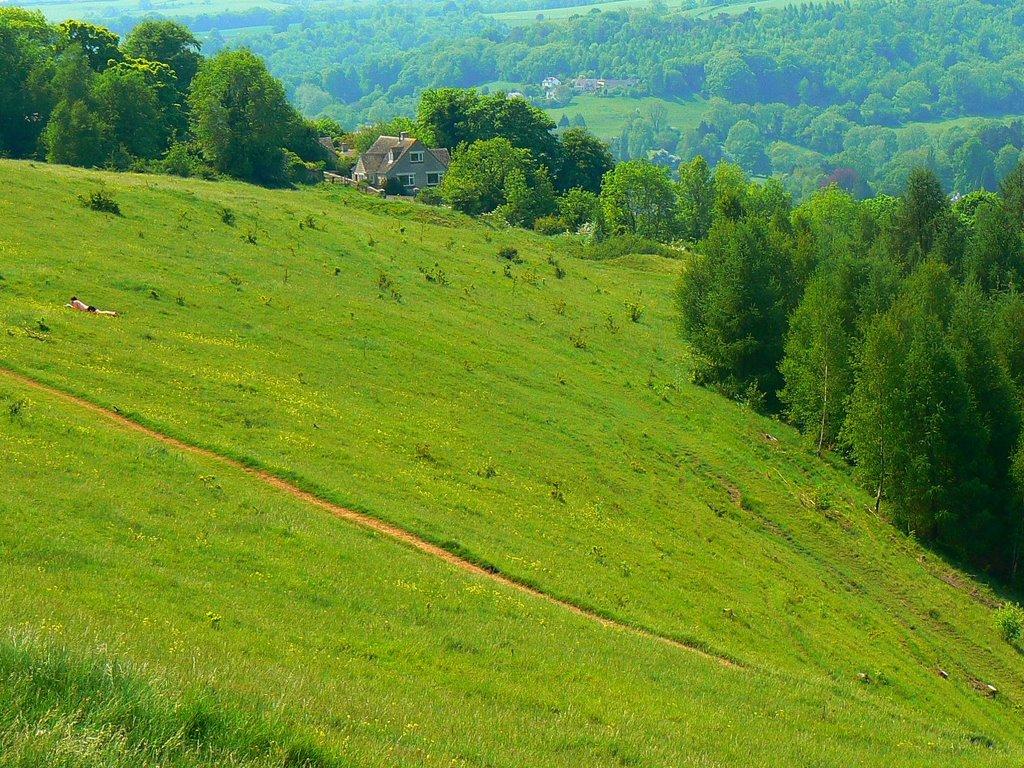 Rodborough Common, near Stroud (south-west), Строуд