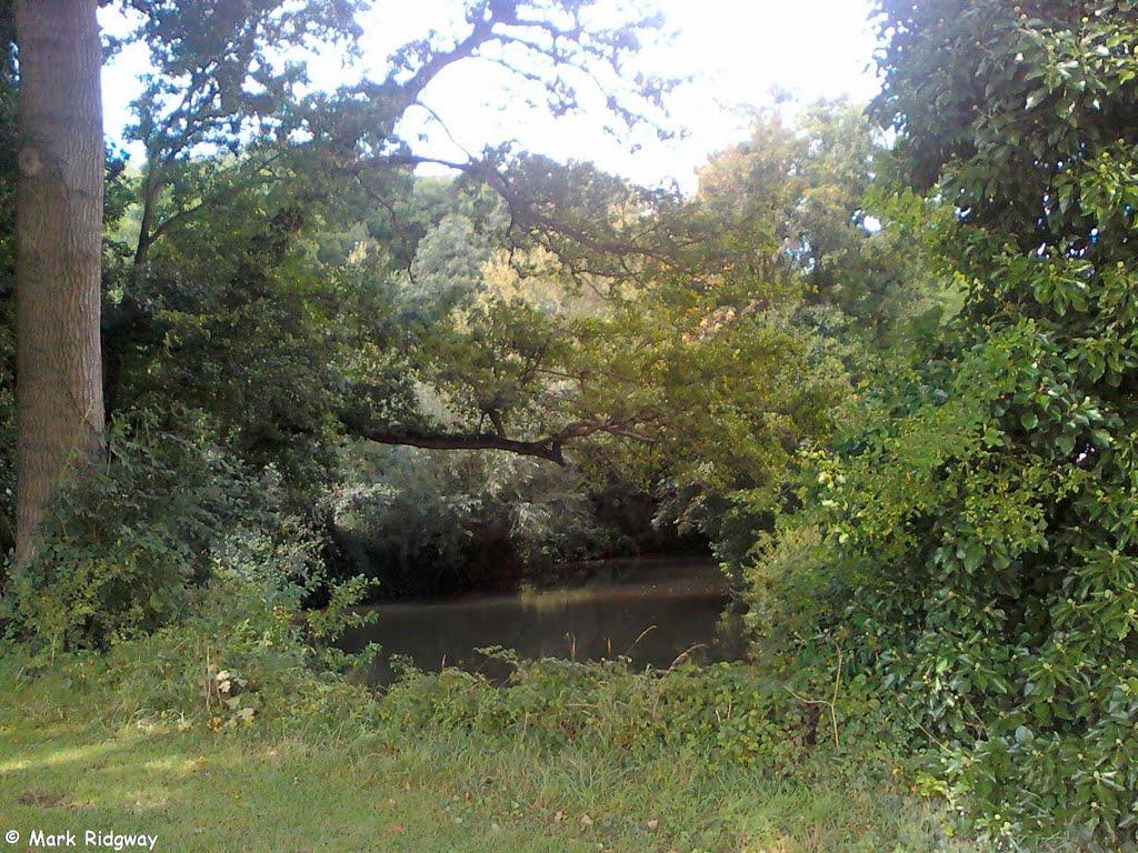 The River Medway, Tonbridge Sportsground (8), Тонбридж