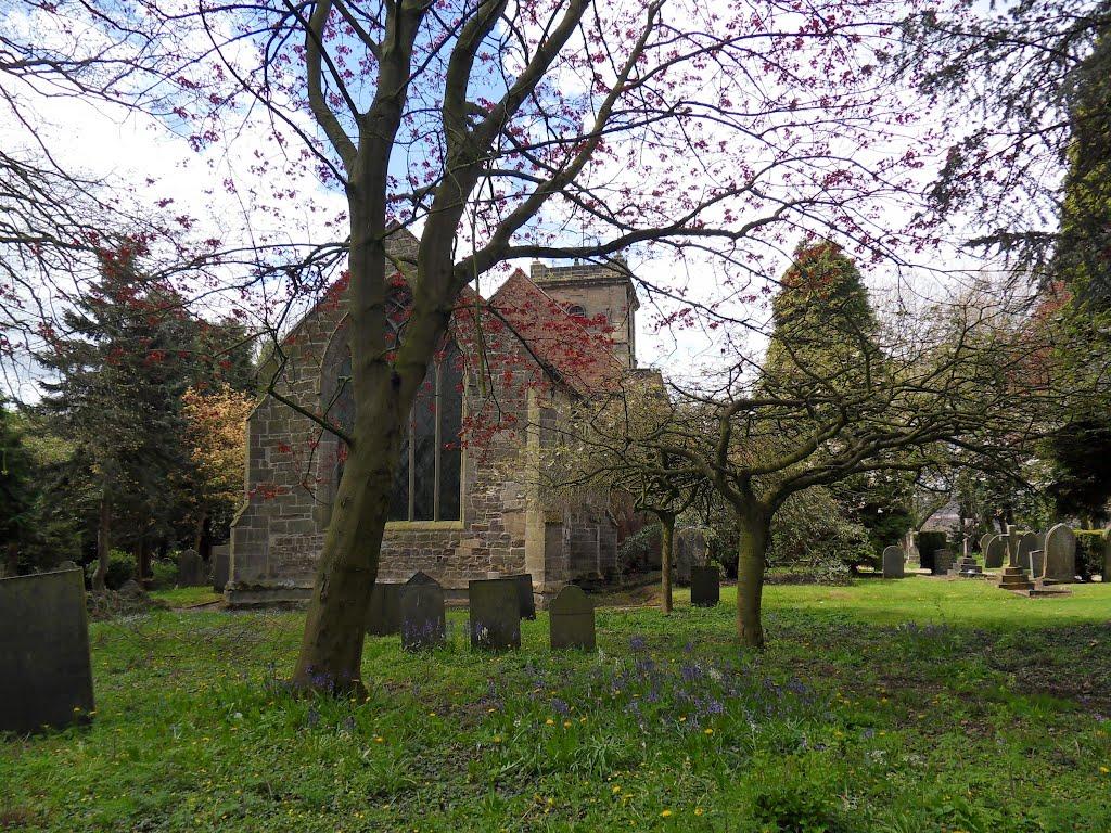 Sibson village churchyard is full of trees., Харрогейт
