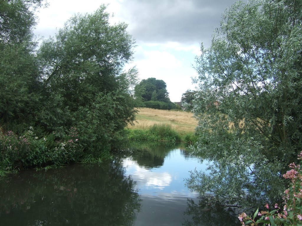 River Lee in Ware Park, Хертфорд