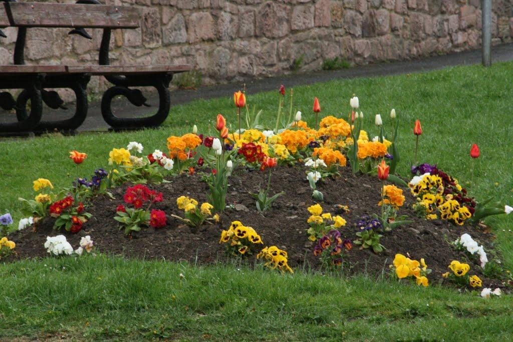 flower bed in Wooler, Хид