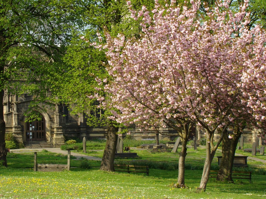 Ecclesfield church grounds in spring, Sheffield S35, Чапелтаун