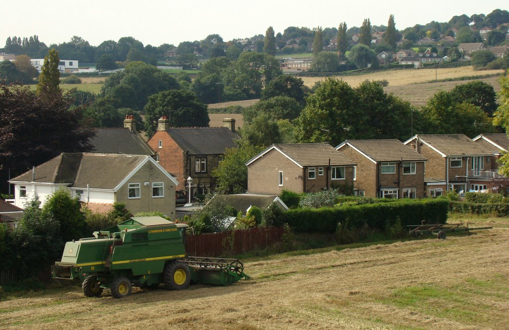 Harvest time in Ecclesfield, Sheffield S35, Чапелтаун