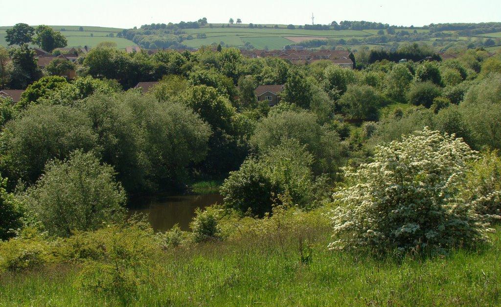High Green countryside, Sheffield S35, Чапелтаун