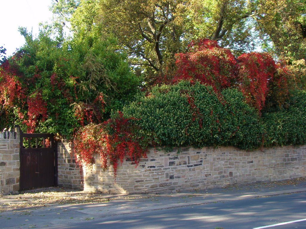 Autumn cascade, Church Street, Ecclesfield, Sheffield S35, Чапелтаун