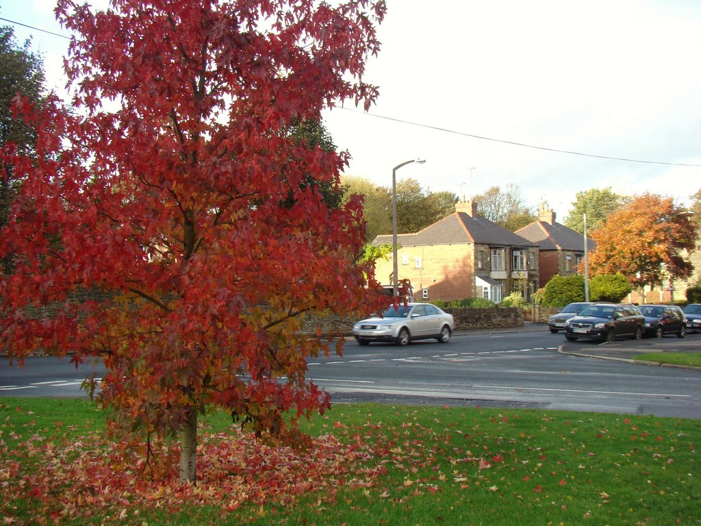 Autumn colours at the junction of Church Street and Mill Road, Ecclesfield, Sheffield S35, Чапелтаун