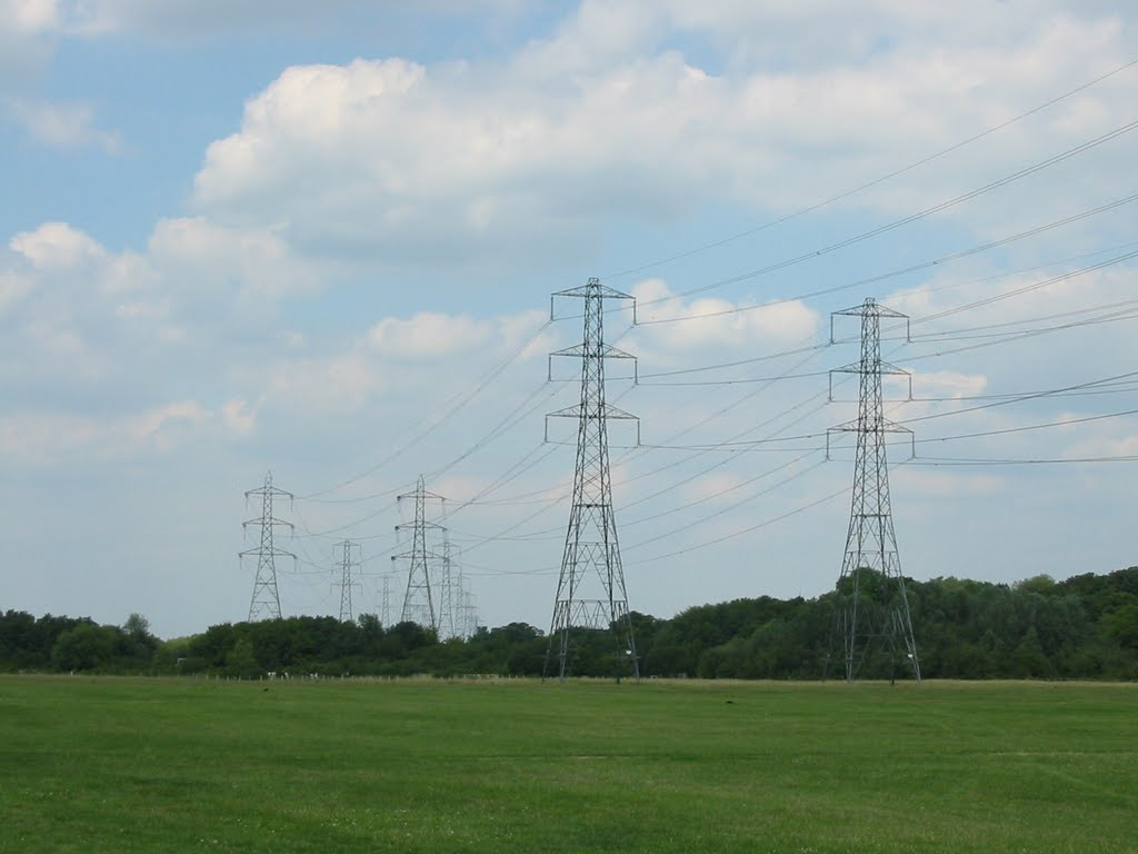 Pylons at Waltham Marsh, Чешант