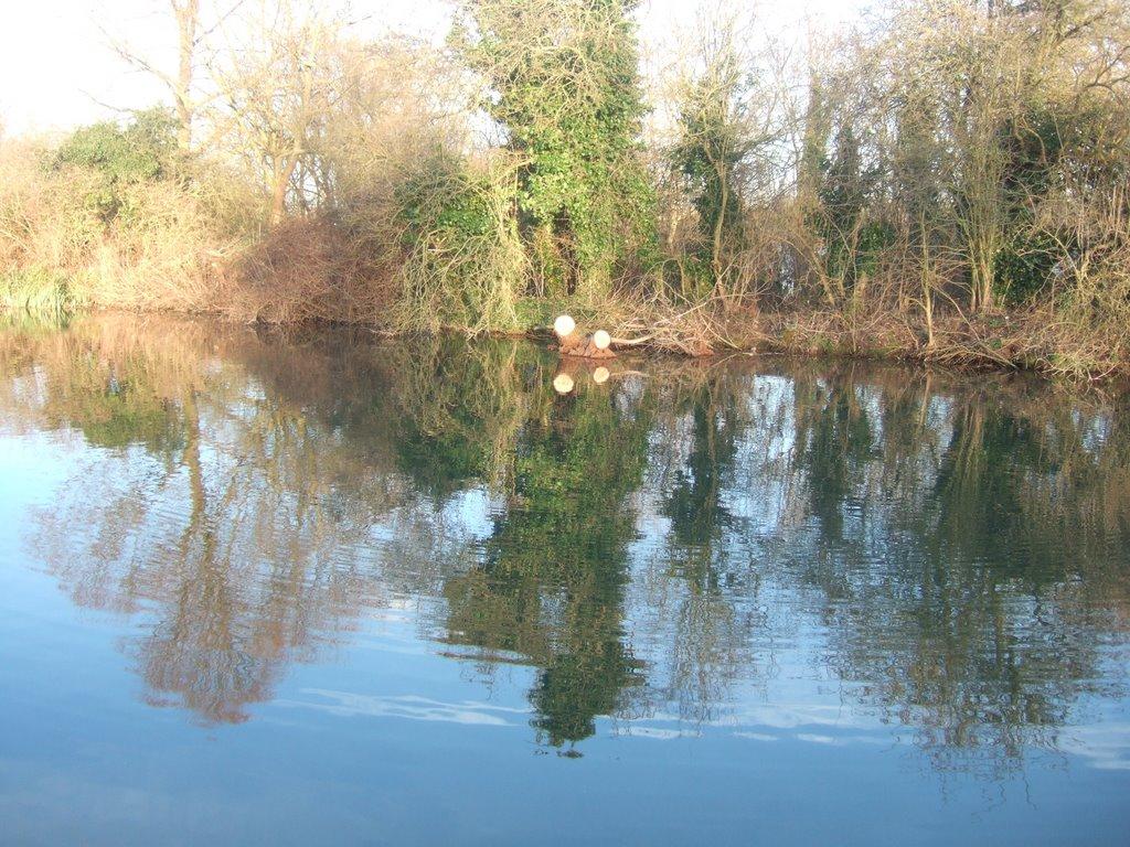 River Lee Navigation, Turnford, Чешант