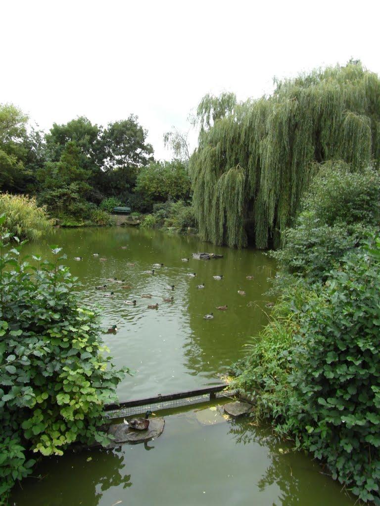 The Cedars Park, Чешант