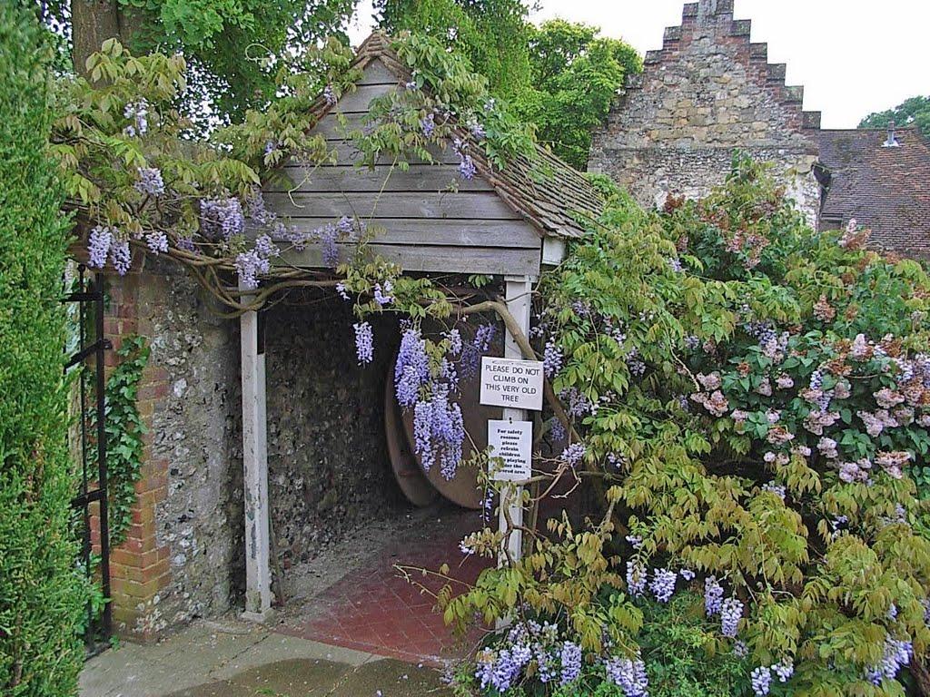 In a Monastery Garden, Чичестер