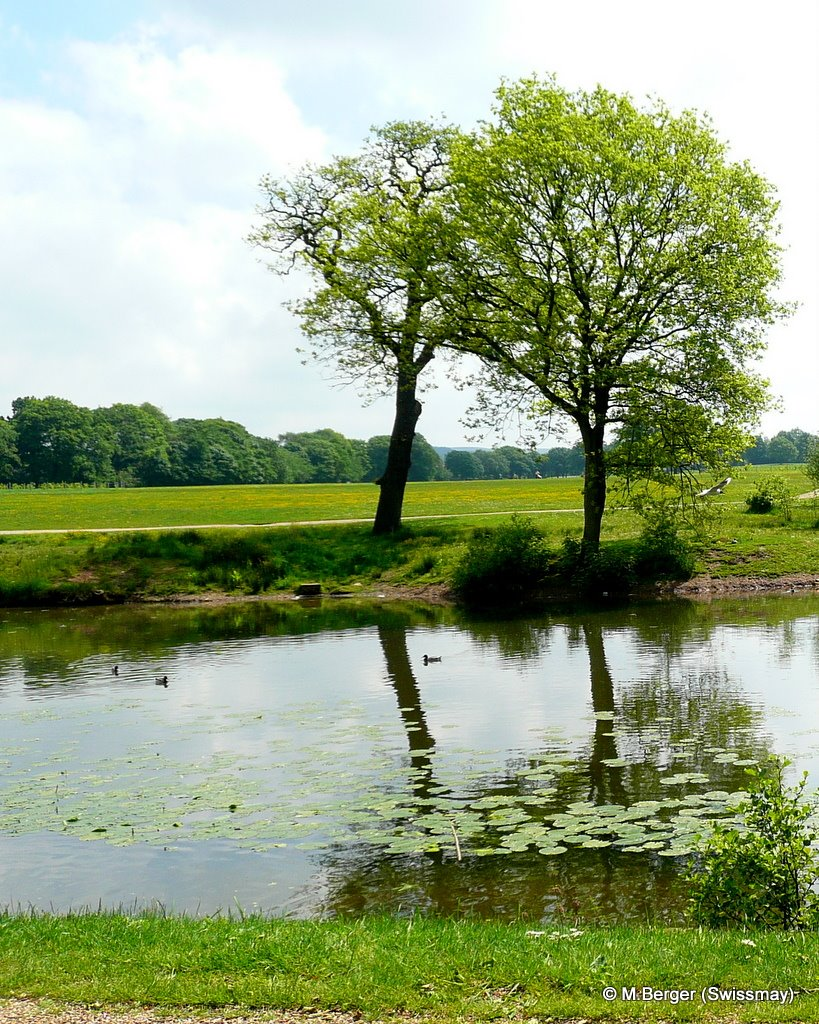 mb - In Astley, a Park in England between the Motorways M6 and M61, Чорли