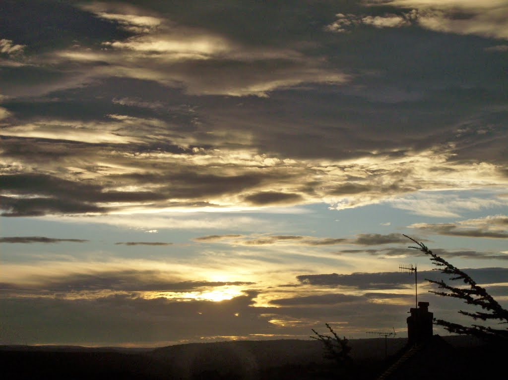 Silver Sunset, Шипли