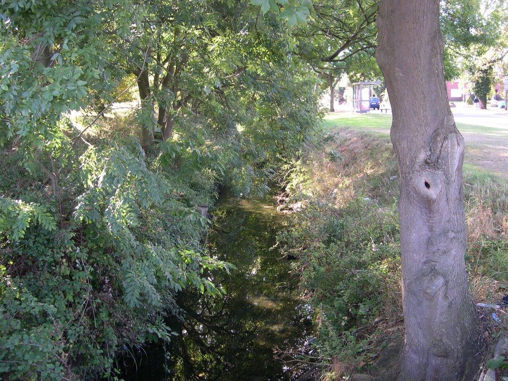 Longmead Road Stream, Ewell, Epsom, Эпсом