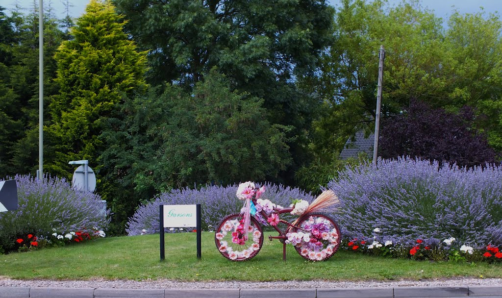 Olympic Surrey Cycle Floral Display Esher Road Roundabout, Эшер