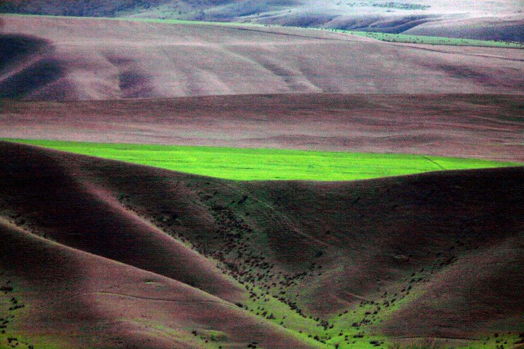 Plaine du Caucase (environs de Sheki), Казах