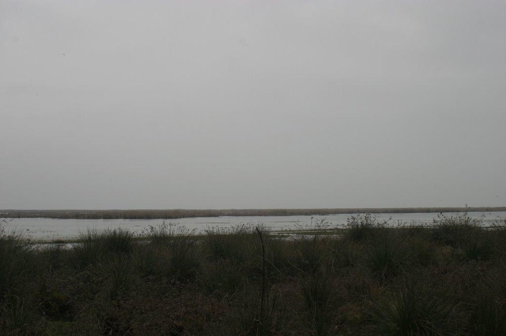 Caspian Sea, Azerbaijan, Биласувар
