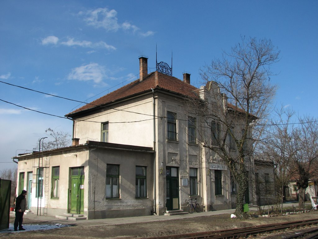Kecskemét kisvasúti állomás, Кечкемет