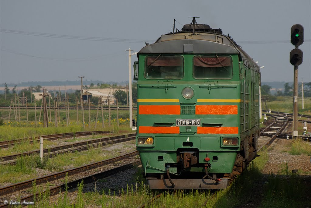 Diesel locomotive 2TE116-1516 on Kamysh-Zarya train station, Куйбышевский