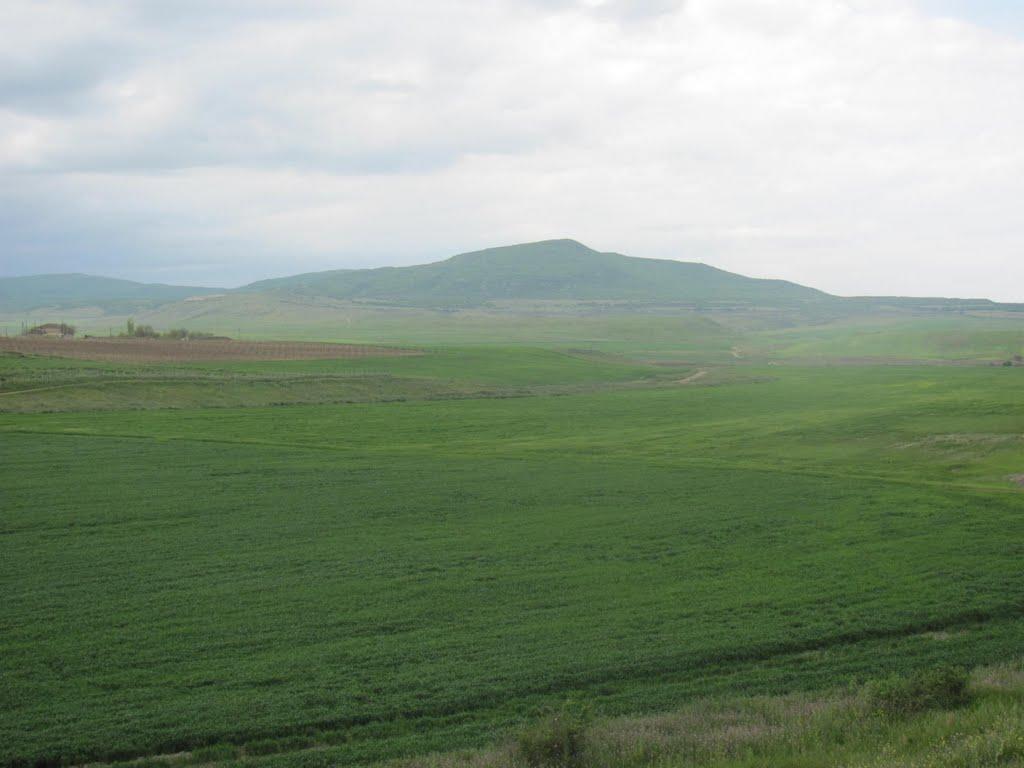Гора Урцеки, Джанга