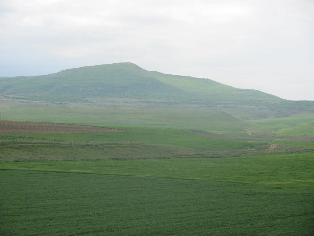 Весенний пейзаж, Джанга