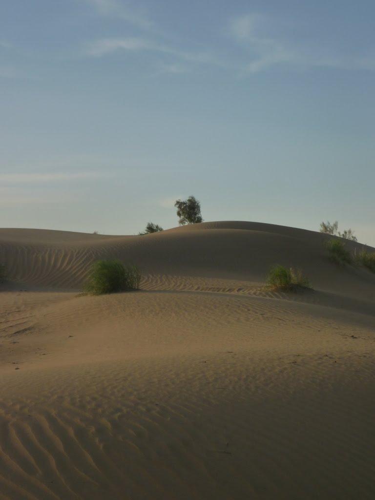 Desert in dusk, Небит-Даг