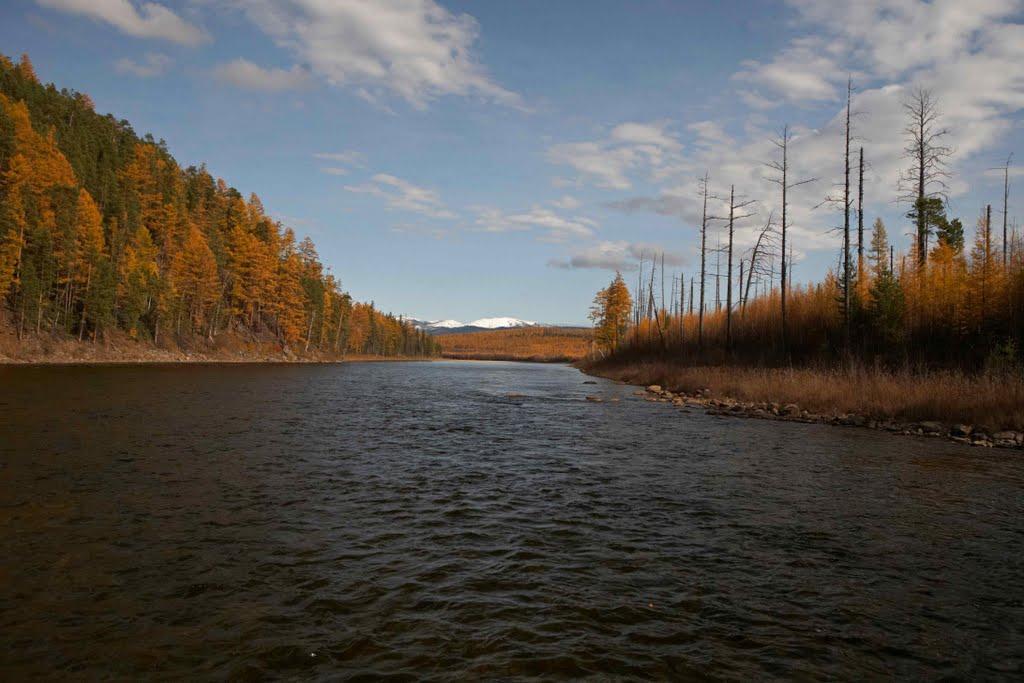 Ulahan-Siligilya river., Чагыл