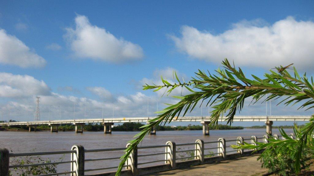 Bờ kè sông Long Toàn - NT, Пхан-Тхит