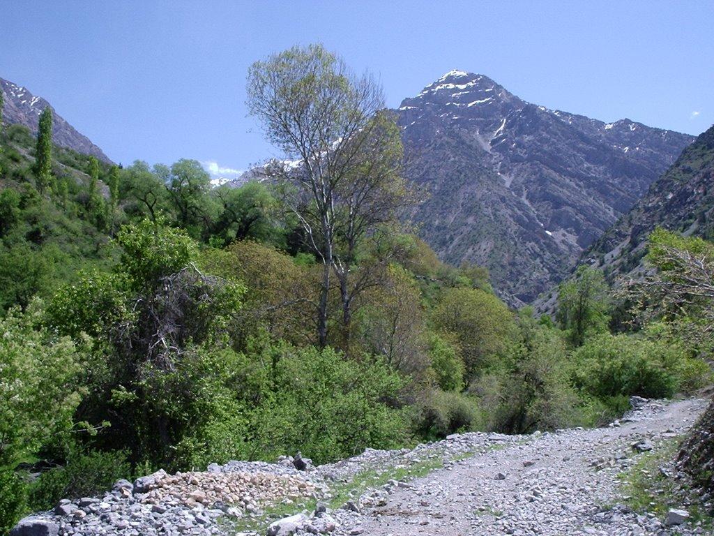 Pum, spring, may, Балыкчи