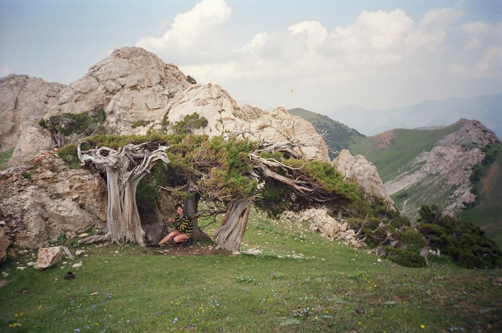 Djindy-Bel plateau, Балыкчи