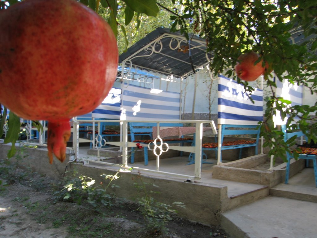 Kadamzhay, cafe Uyut (cosiness), Балыкчи