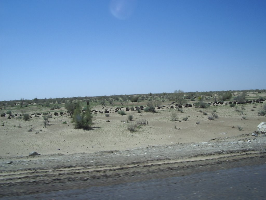 Désert Kizyl Koum   -  Uzbekistan, Газли