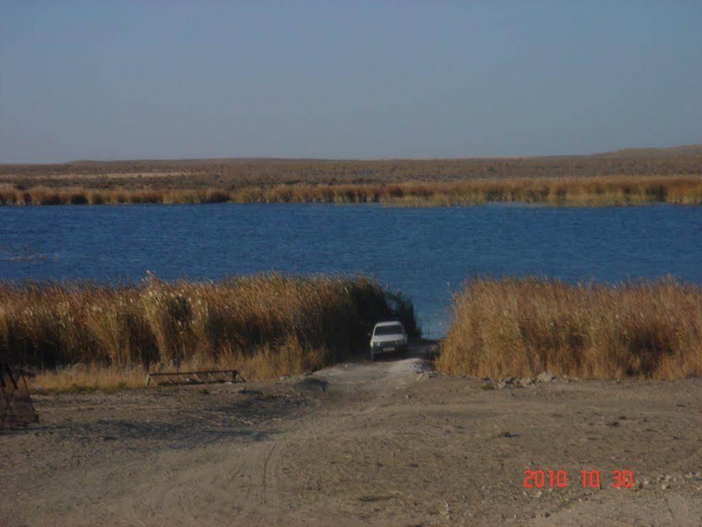 озеро Узока, Газли