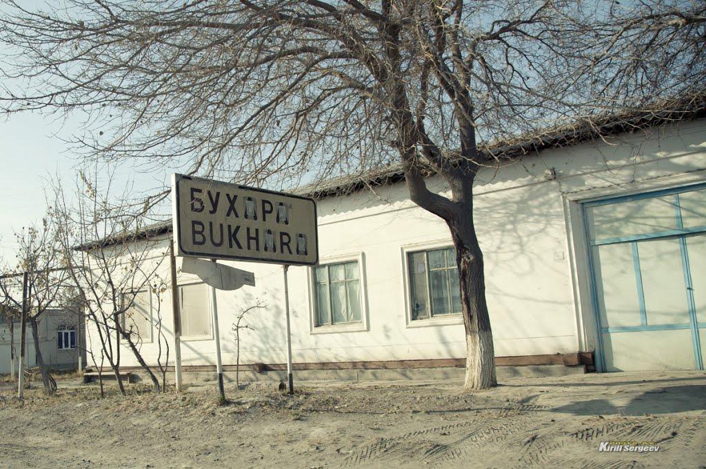Welcome to Bukhara!, Галаасия