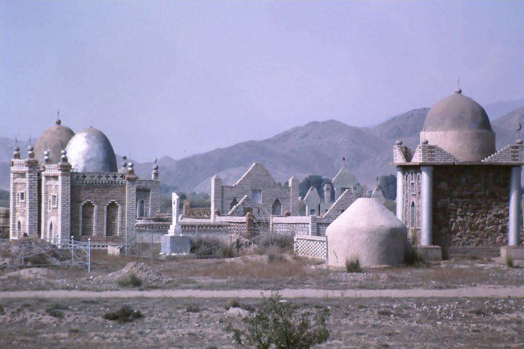 Uzbekistan in Bukhara District, Каракуль