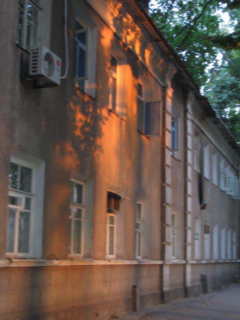 Ferghana, street, sunbeam, Фергана