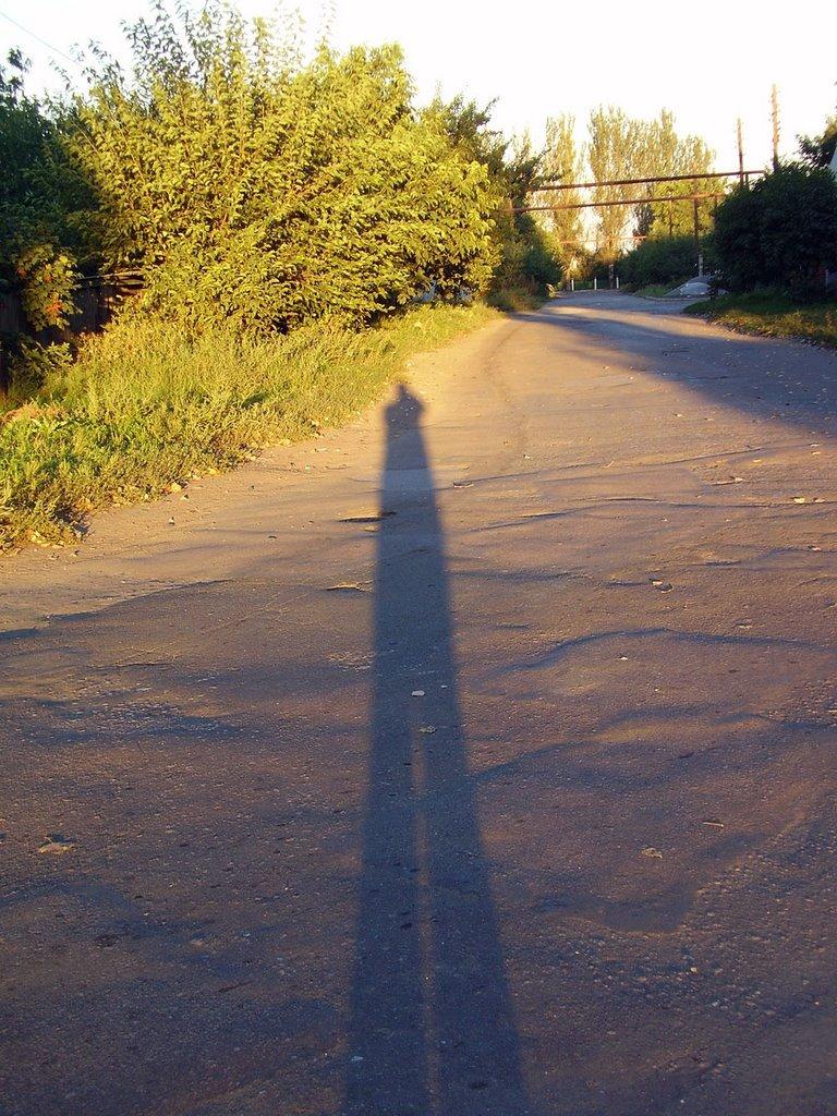 shadow, Першотравневое