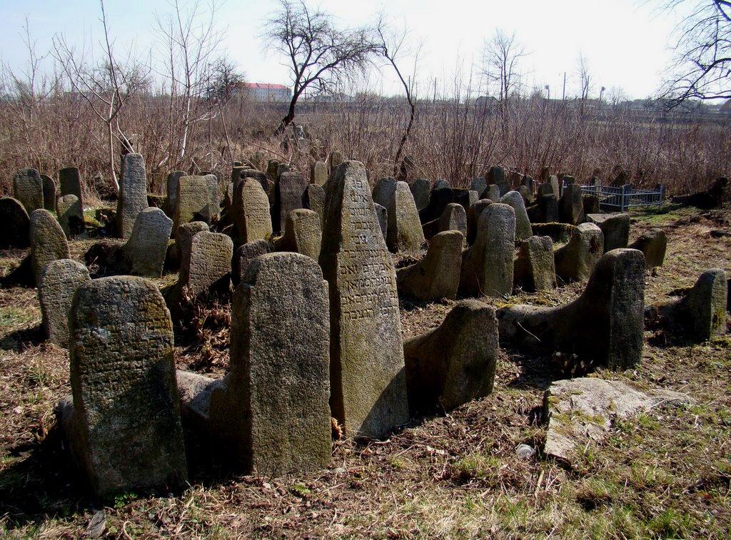 Berdychiv - old jewish cemetery, старий єврейский цвинтар, старое еврейское кладбище, Бердичев