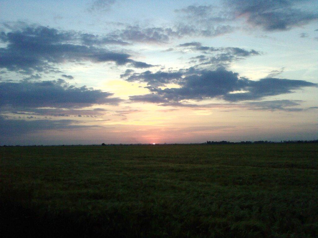 Фермерские поля, Закат, Каменка-Днепровская