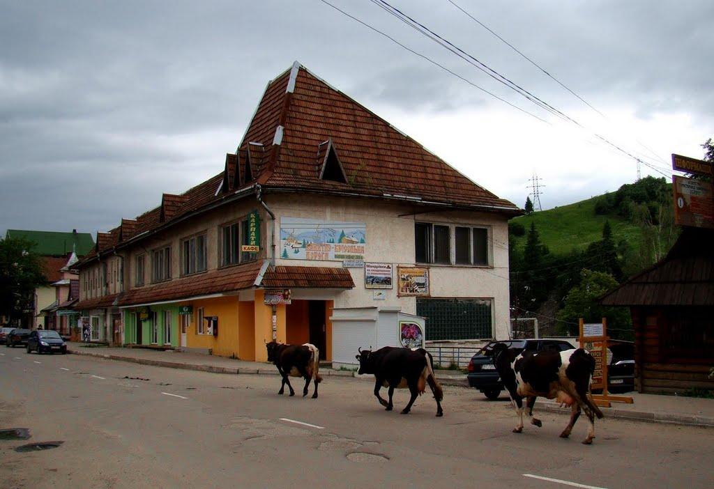 центр Ворохти, Vorohta - centre, Ворохта