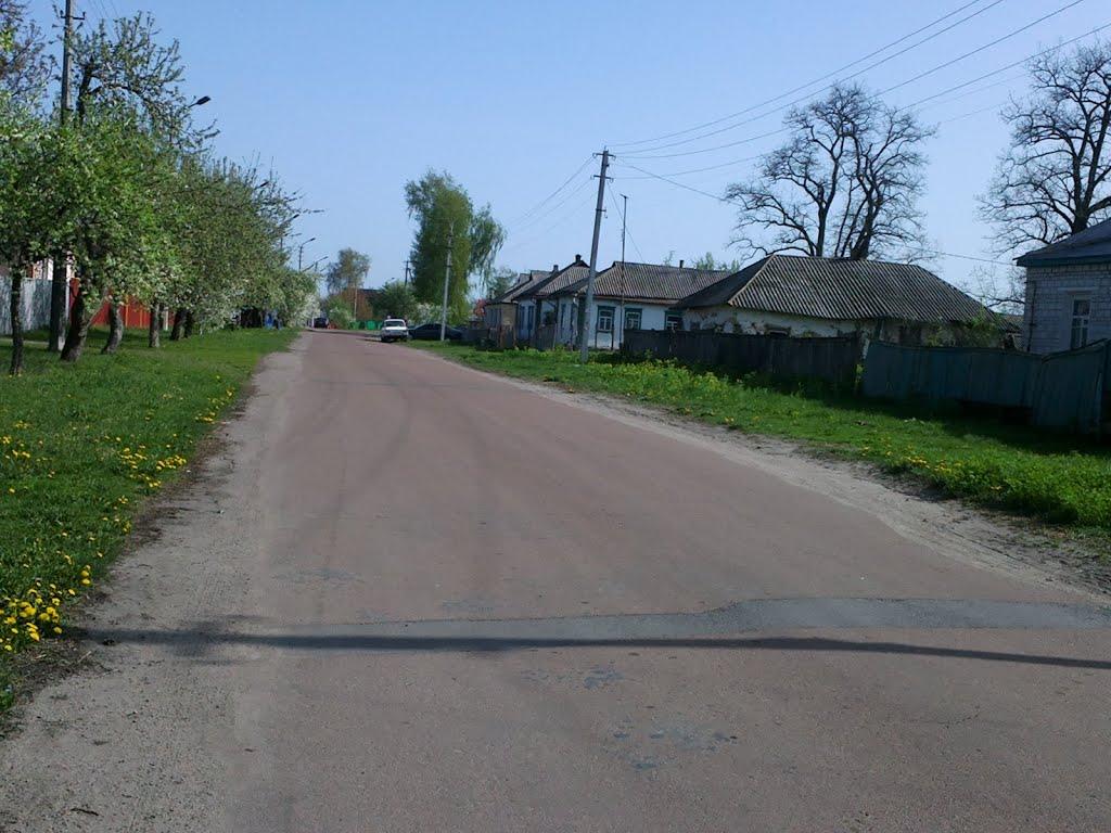 Знакомства киевская обл. згуровка