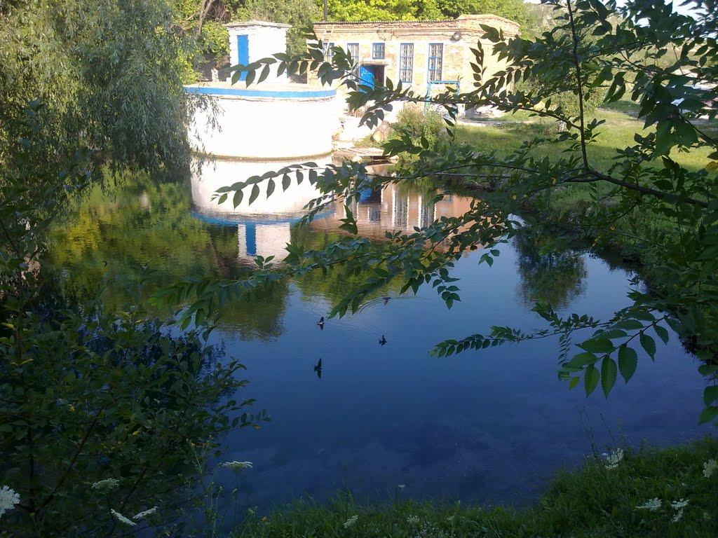 Живая вода, Белогоровка