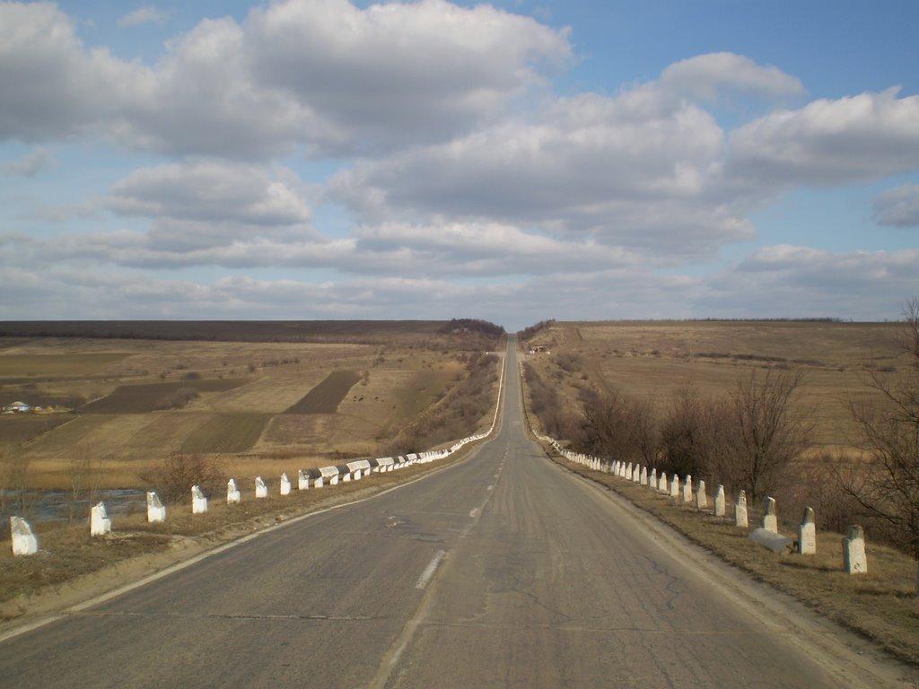 Одесская область. Трасса Кишинев-Полтава. / Odessa region. Route Kishinev - Poltava / 01_2008, Ананьев