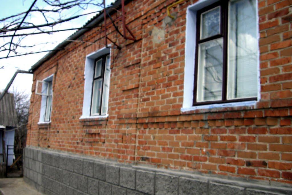 Дом моих родителей ( House of my parents), Ананьев