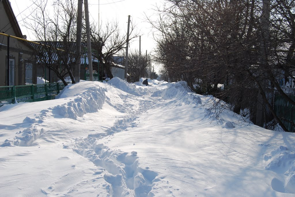 Зима 2009, Беляевка