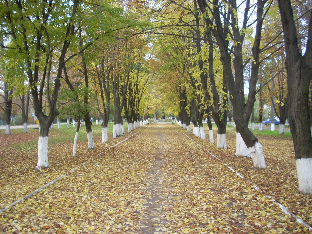 парк Победы г. Беляевка, Беляевка