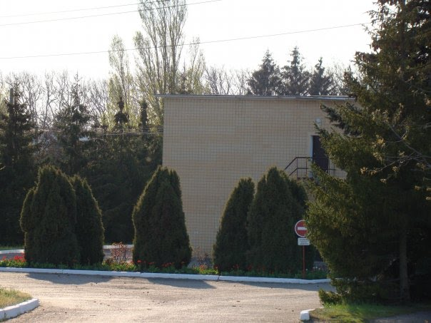 Станция Днестр, Беляевка