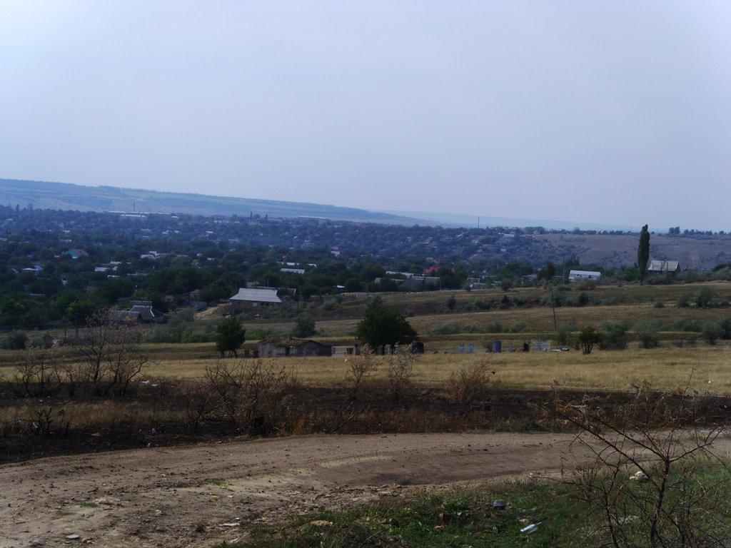 Вид на Березовку 2, Березовка
