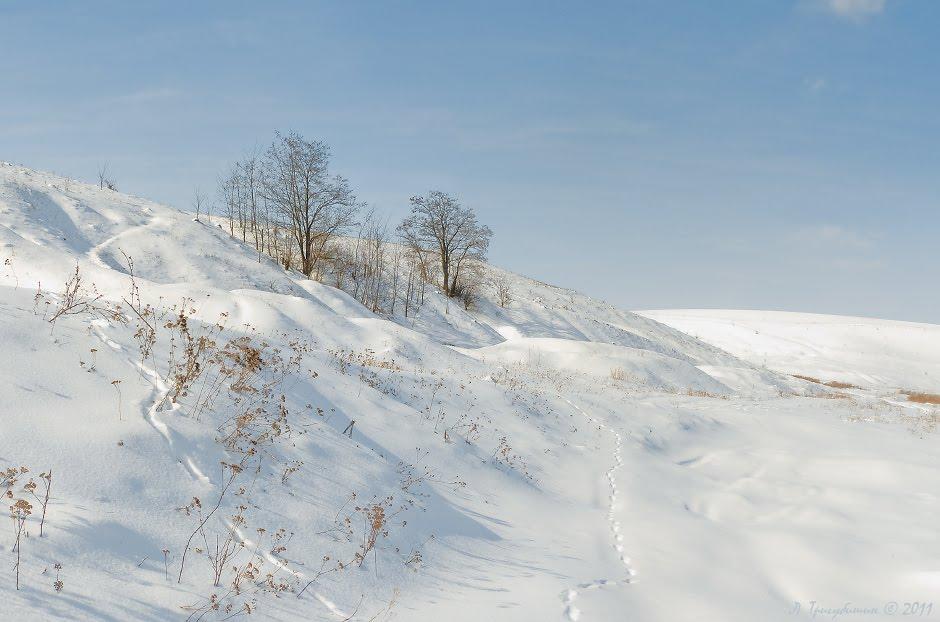 Оазис снігової пустелі, Заложцы