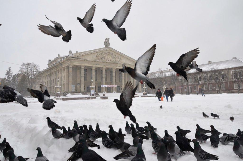 Тернопіль.Театральний майдан, Тернополь